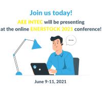 Conference presentation | ENERSTOCK 2021